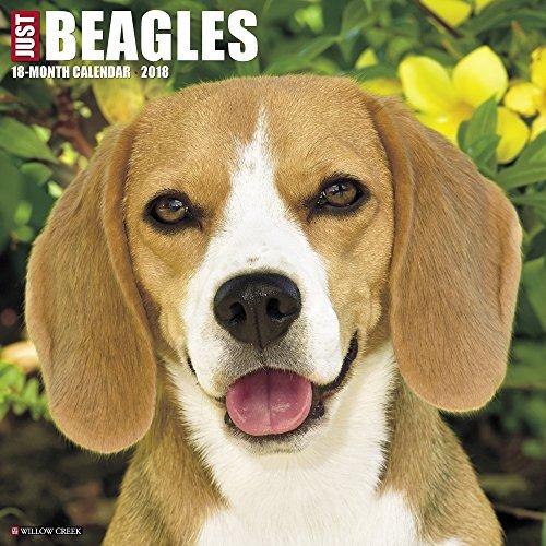 Hot Beagles 2018 Wall Calendar