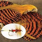 Orvis Golden Pheasant