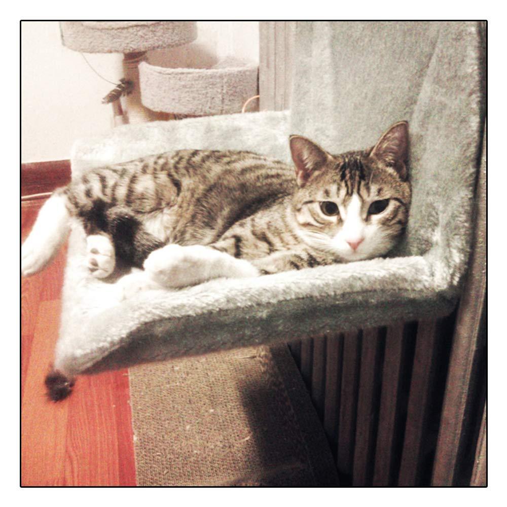 Anjing - Radiador para Cama de Gato, diseño de Piel sintética con ...