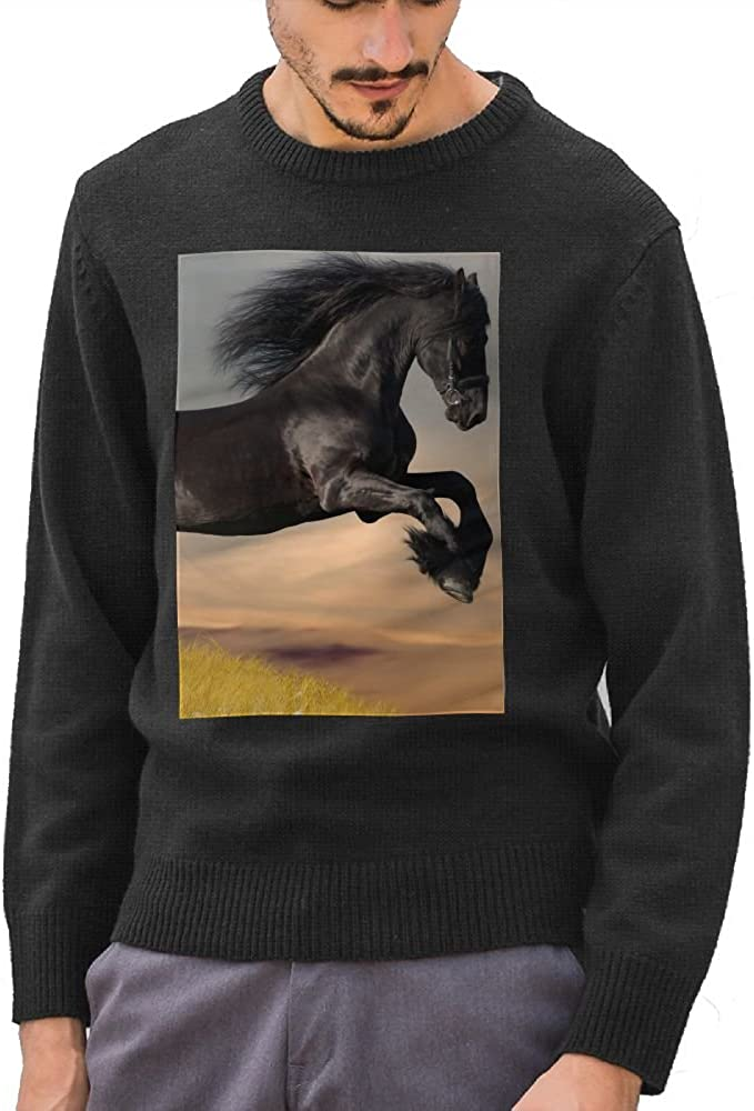 Mr.Roadman Mens Black Horse Funny Logo DIY Customized Pattern Fashion O-Neck Sweater Jumpers Pullover