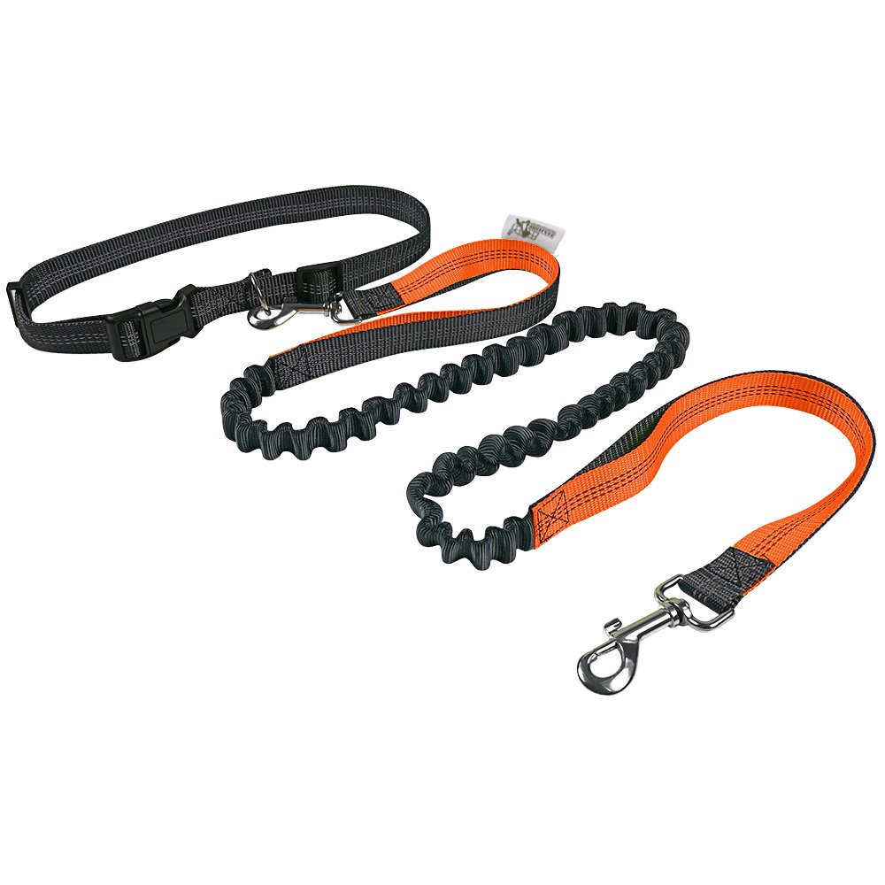 HARBO Handsfree Running Dog Leash - Durable Bungee Leash, Reflective Stitching - Shock Absorbing Adjustable Waist Belt, for Running, Jogging, Walking (Orange)