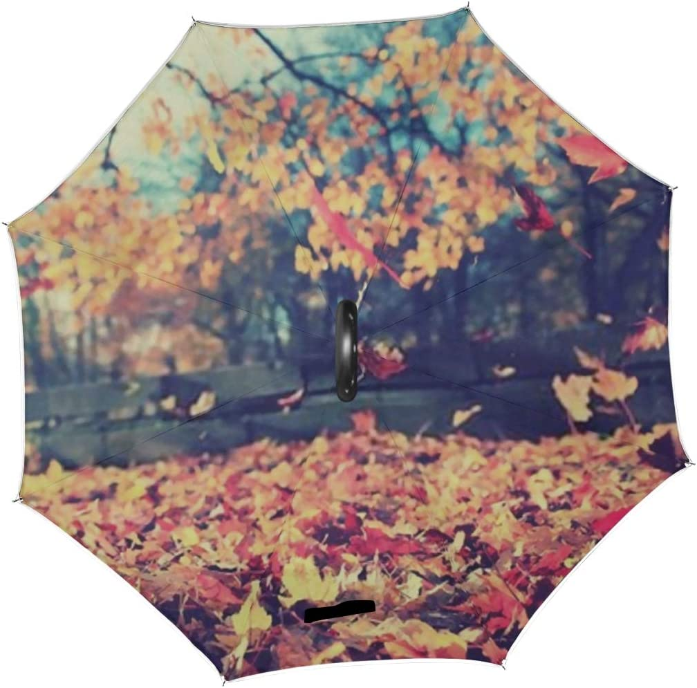 Double Layer Inverted Inverted Umbrella Is Light And Sturdy Background Texture Yellow Leaves Autumn Leaf Reverse Umbrella And Windproof Umbrella Edge