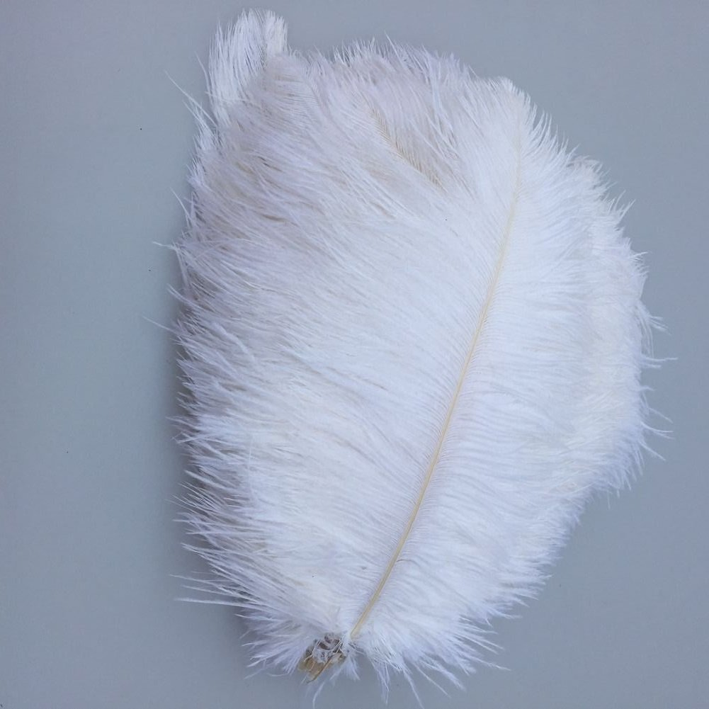 MELADY Pack of 1000pcs Natural Ostrich Feathers Centerpieces 8-10inch(20-25cm) for Home Wedding Party Decoration (white)