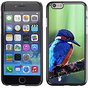YOYO Slim PC / Aluminium Case Cover Armor Shell Portection //Cute Majestic Blue Kingfisher Bird //Apple Iphone 6 Plus 5.5