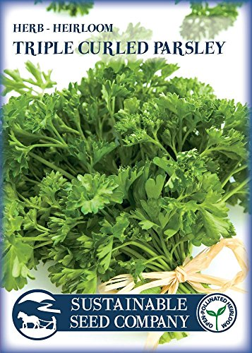 Culinary-Herb-Seed-Collection-100-NON-GMO-Easy-to-Grow-Heirloom-Seeds-from-a-REAL-Seed-Company