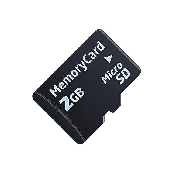 Amazon.com: Bully perro 46590 – 1 tarjeta Micro SD 1 GB ...