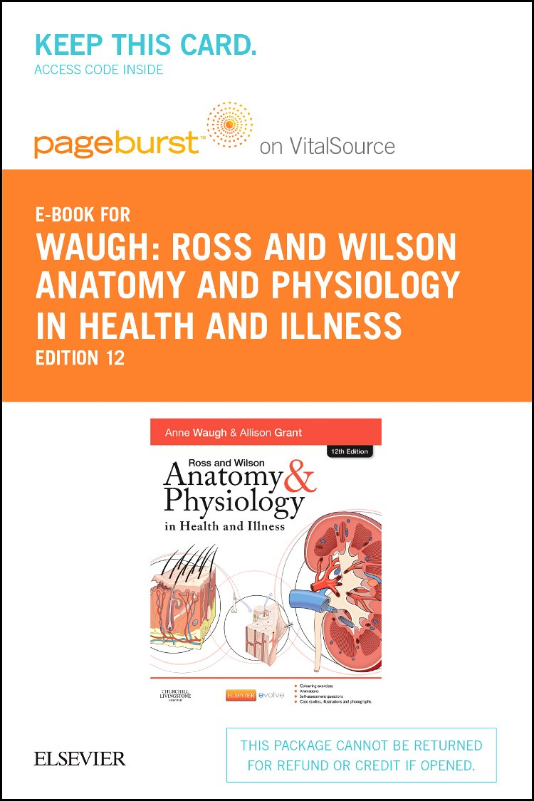 Workbooks » Ross And Wilson Anatomy And Physiology Colouring And ...