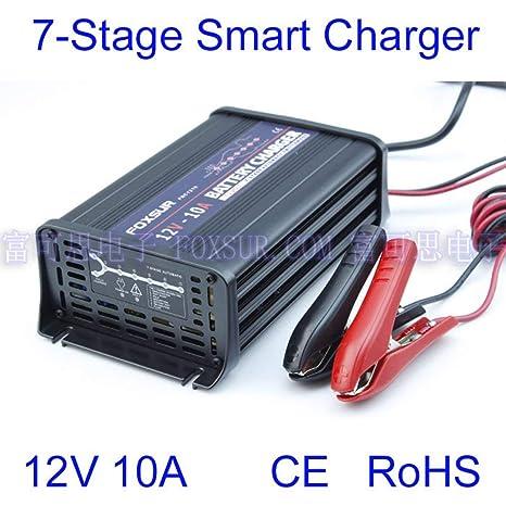 LouiseEvel215 12V 10A Cargador de batería automático para ...