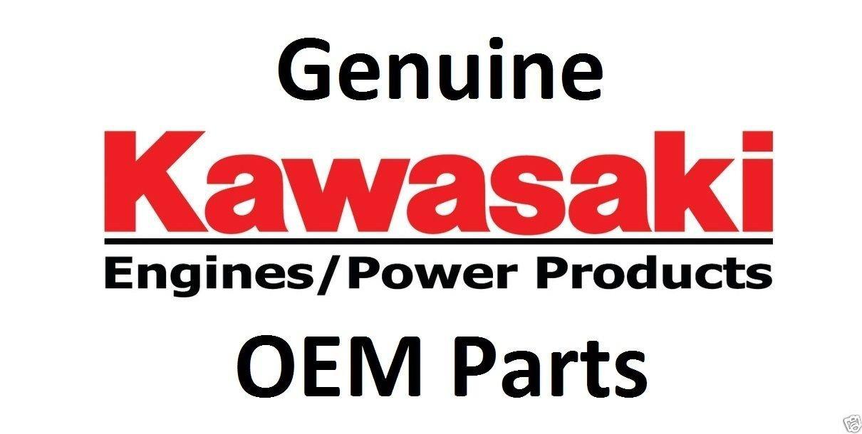 Kawasaki Replacement Part # 11008-7024 cylinder head #1