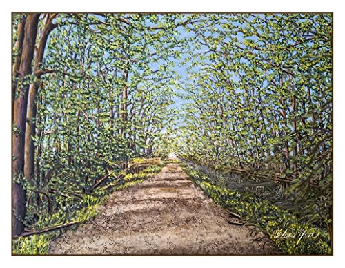 Birdsong Card - Fine Art Note Card: Birdsong Trail in the Spring (Item # 08-082-00)