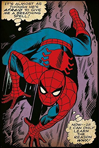 The Amazing Spider-Man - Retro Marvel Comic Poster / Print Breathing Spell & Strip