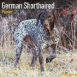 German ShortHair Pointer Calendar - Dog Breed Calendars - 2017 - 2018 wall Calendars - 16 Month by Avonside