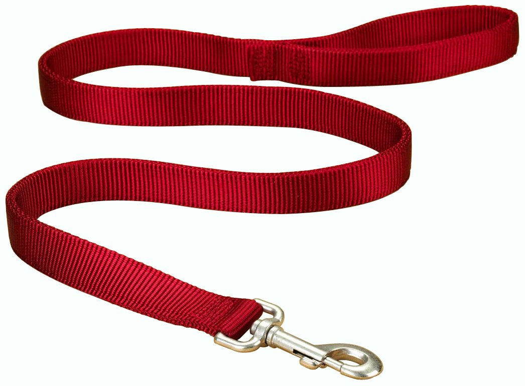 Hamilton Double Thick Nylon Dog Training Lead, 1-Inch by 6-Feet, Red