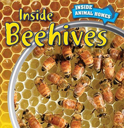 Inside Beehives (Inside Animal Homes)