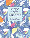 One Month at a Glance 2018-2020 3 Year Planner: Monthly Schedule Organizer - Agenda For 3 Years, Month Per Page Calendar, Appointment Gift Notebook