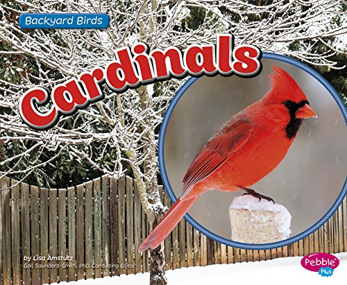 Cardinals (Backyard Birds)