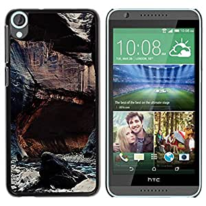 Paccase / SLIM PC / Aliminium Casa Carcasa Funda Case Cover - Cliffs River Nature Rocks Water - HTC Desire 820