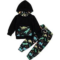 Borlai 2Pcs Niños Niño Dinosaurio Conjunto de Ropa para Niños Pequeños Camisa con Capucha de Algodón Pantalones Trajes 1…