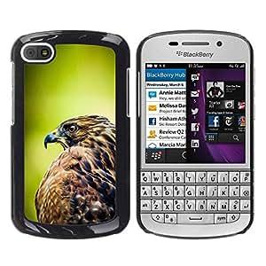 PC/Aluminum Funda Carcasa protectora para BlackBerry Q10 hawk bird green focus blurry summer / JUSTGO PHONE PROTECTOR