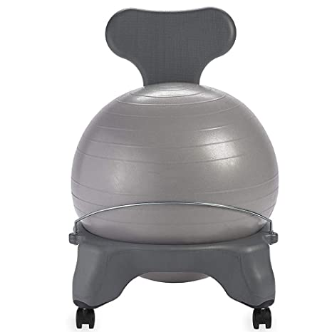 Amazon.com - WJL Classic Balance Ball Chair - Sports ...