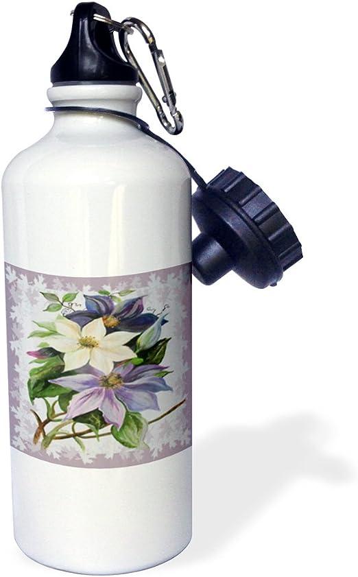 3dRose Clematis, enredadera de escalada, lila, morado, flores ...