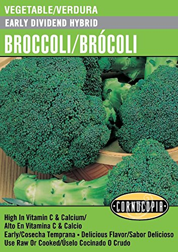Early Dividend Hybrid Broccoli/Brócoli - Spanish/English