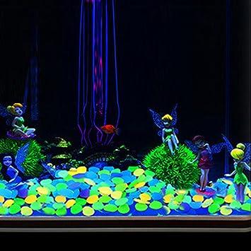 Ainstsk - 200 piedras brillantes en la oscuridad para jardín, luminosas de cobre, brillan