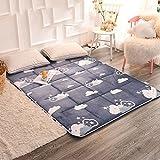 HYXL Flannel Thickening Non-slip Floor Mattress Plush mattress topper, Mattress pad protector Flannel cushion plus thick velvet mattress warm -F 150x200cm(59x79inch)