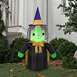 a3d599def8e Amazon.com  Black - Inflatable Yard Decorations   Outdoor Holiday ...