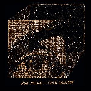 vignette de 'Gold shadow (Asaf Avidan)'