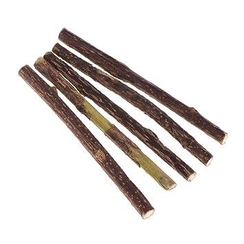 5 pieza gato Menta Stick naturales gato Molar dientes Pasta de dientes dental Snack Limpieza pura: Amazon.es: Hogar