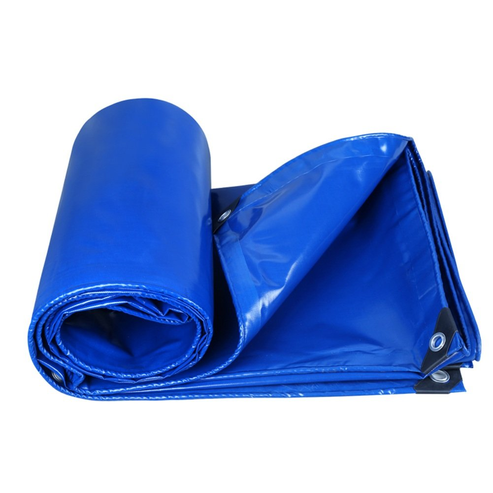 CHAOXIANG オーニング 厚い 両面 防水 日焼け止め 耐高温性 耐寒性 耐摩耗性 耐食性 防塵の PVC、 3色、 350g/m 2、 厚さ 0.35mm、 21サイズ (色 : 青, サイズ さいず : 6×8m) B07DBNWH3J 6×8m 青 青 6×8m