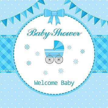 YongFoto 2,5x2,5m Vinilo Fondo de Fotografia Baby Shower Bienvenido bebé Cochecito Banderas del empavesado Puntos Azules Manteles Telón de Fondo Photo Booth ...