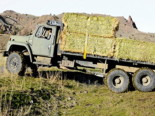 ranch-wife-drives-military-truck-while-cowboys-feed-cattle