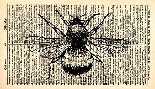(Bumble Bee Art Print - Animal Art Print - Insect Art Print - Vintage Art Print - Vintage Dictionary Art Print - Bumble Bee Illustration - Bumble Bee Book Print - Dictionary Page Print 664B)