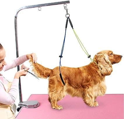 Mesa de Aseo para Mascotas Cuerda Ajustable para El Cuidado de Mascotas Cuello con Correa Y Soporte para Haunch Juego de Bucle para Aseo de Perros para Perros Pequeños/Medianos: Amazon.es: Belleza