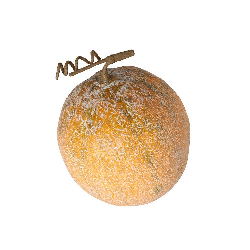 Catral 72020056–Melone Ambrosia, 17x 10x 14cm, Colore: Marrone 17x 10x 14cm