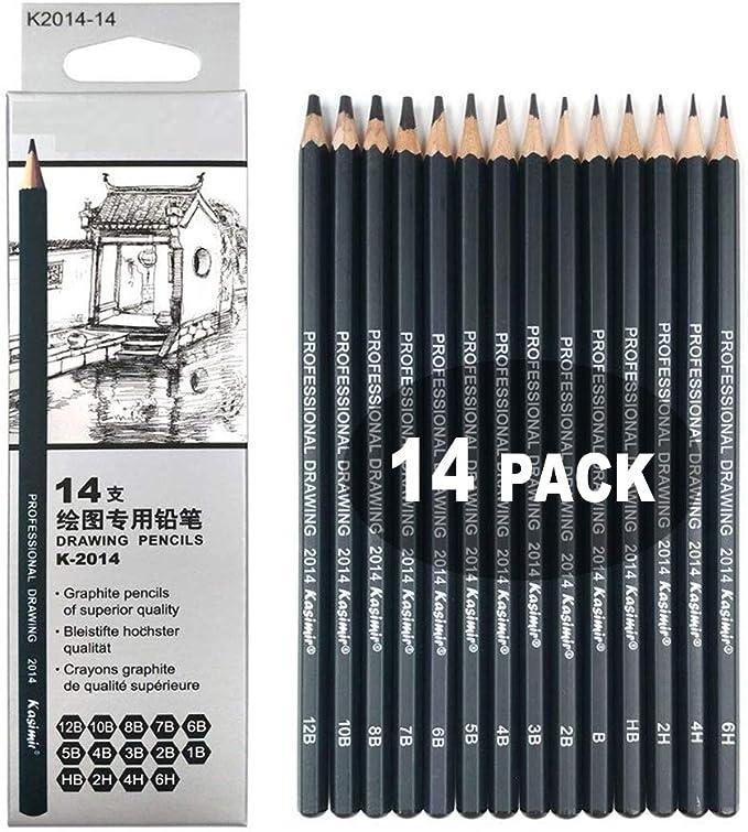 14 Pcs Lapices De Dibujo Profesional Kit De Dibujo Lápices De Dibujo Juego Para Dibujar Y Dibujar Con Borradores Carbón Palo Sacapuntas Art Para Artistas Adultos Recargas De Color Y Negro Para