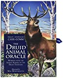 img - for Druid Animal Oracle book / textbook / text book
