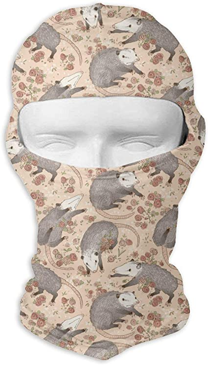 Wind-Resistant Face Mask LaoJi Colorful Dinosaurs Winter Ski Mask Balaclava Hood