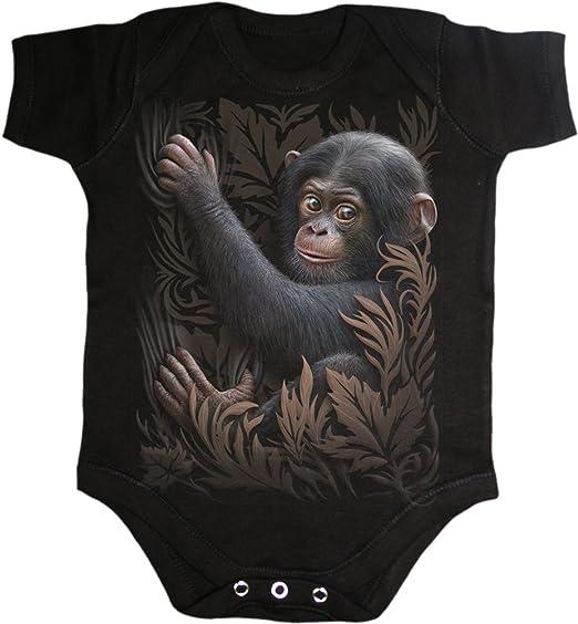 48b47caf4 Amazon.com: Spiral Baby-Boys - Monkey Business - Baby Sleepsuit ...
