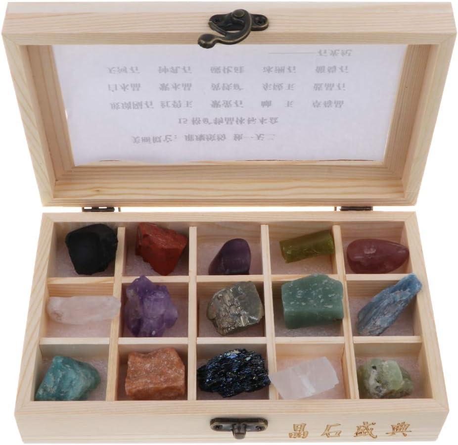 B Blesiya 15pcs Piedra Natural Juego de Ciencias Geológicas - Colección de Muestras de Laboratorio de Minerales de Roca
