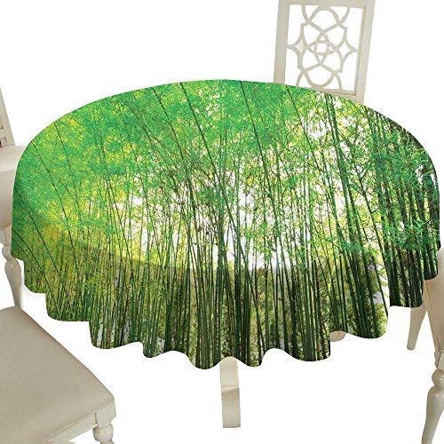 (outdoor round tablecloth 54 Inch Bamboo Trees Decotaions,Natural Bamboo Forest Botanical Garden Photography Print Great for,family,outdoors,restaurant,Party,Wedding,Coffee Bar,traveling,Party,holiday)