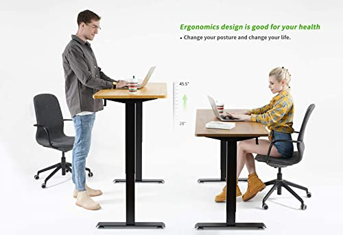 FAMISKY Dual Motor Adjustable Height Electric Standing Desk