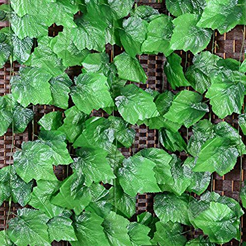 - Vine Leaves, 90.5 Feet Artificial Fake Hanging Vine Plant Leaves Ivy Plant Garland Hanging Used for Garden Wall Decoration Parties Grapevine,12 Strip