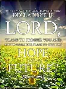 Jeremiah 29 11 Wall Chart Unlaminated Rose Publishing