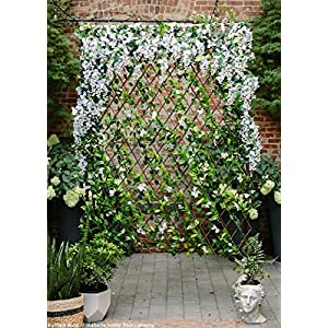 Events & Crafts Accordian Ivy Lattice Fence with Flowers 8' 8