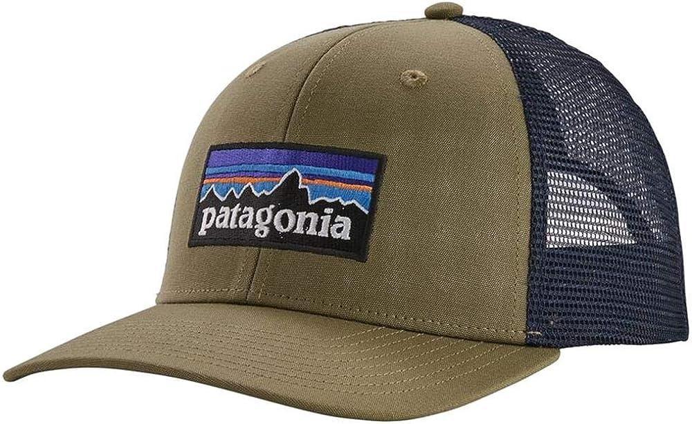 Patagonia P-6 Trucker Hat (Sage Khaki): Amazon.es: Ropa y accesorios