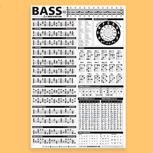 Essential Bass Theory Chart Version 2 (UPDATED & REVISED) • Bass Reference Poster 24