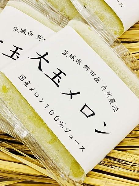 国産メロンジュース無添加100%フレッシュジュース【10袋】自然農法【熨斗対応可】